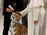 Pope thanks circus performers for bringing joy to often dark world