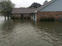 Leader of US Bishops Calls for Collection for Louisiana Flood Victims