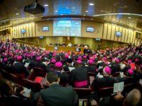 Website Launched for Synod of Bishops on Young People in 2018