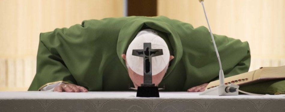 """Pope"""" s Morning Homily: A Good Shepherd Gives His Life for His Sheep"""