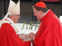 Pope Tells Archbishops Not To Be Armchair Catholics, But Apostles