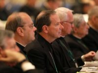 Bishops urged to pass effective policies on accountability, transparency