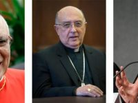 Pope appoints three cardinals to help lead synod on Amazon