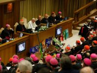 First synod talks look at climate, priests, inculturation, Vatican says