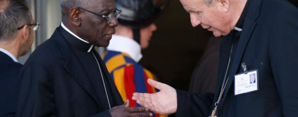 Cardinal Sarah: To oppose the pope is to be outside the church