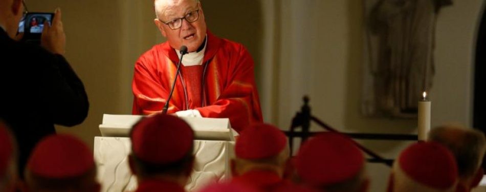 Cardinal urges New York bishops to find solace in St. Peters example