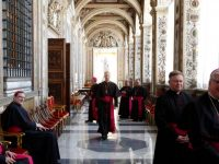 Pope shares with U.S. bishops his frustration with reaction to Amazon text